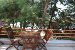 снимка на здрави дървени столове, подходящи за навън