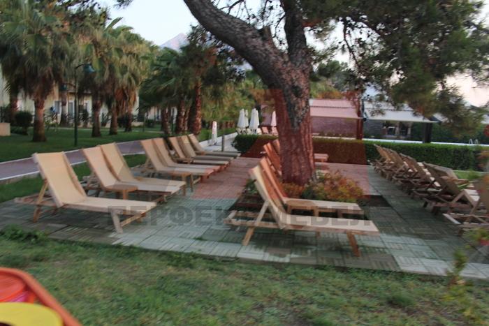 Конфортни дървени шезлонзи с безплатна доставка