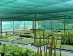 снимка на Мрежа антиградушка за защита на големи земеделски площи